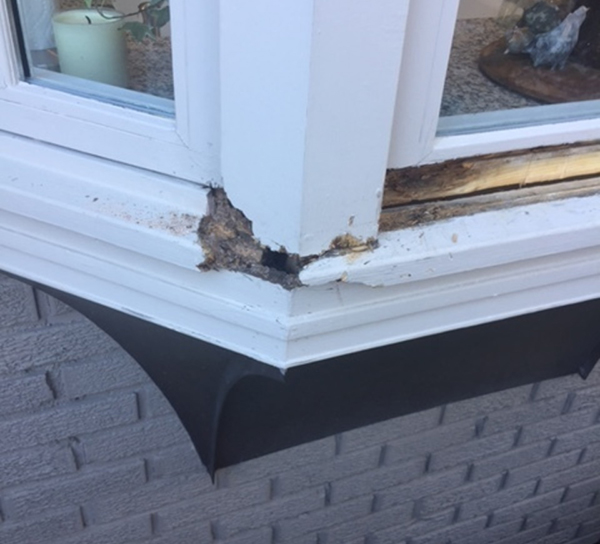 Wood_Rot_Repair_Specialists_-_Window_Sill_-_IMG_306120170317-6169-i2dhs0_960x
